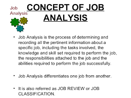 Case Study on Job Analysis Scribd Conducting a Thematic analysis from     data