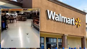 Walmart Alvin Tx Colony Of Bats Invades Walmart Store They Need To Get Them Out Of