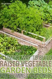 beginner vegetable garden. Interesting Vegetable New To Gardening Learn How Build Raised Vegetable Garden Beds And The  Benefits Of To Beginner Vegetable Garden