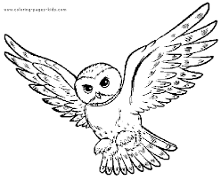 Small Picture Image for Spesial Nature Great Horned Owl Coloring Pages and Draw