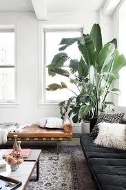 Style Je Woonkamer Met Een Grote Kamerplant In De Hoek Roomed