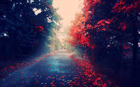 23+ Red Nature Wallpaper Full Hd ...