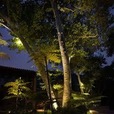 Landscape Lighting Moonlight Effect Landscape Lighting Guide Landscape Lighting Tips At Lumens Com