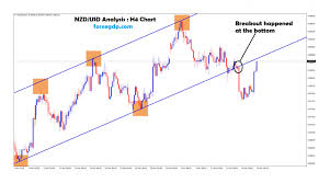 Nzd Usd Investing Archives Forex Gdp