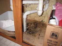 Under Kitchen Sink Cabinet How To Get Rid Of Mold Under Kitchen Sink Cabinet Cliff Kitchen