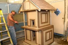 Cat House Cat House Best Images Collections Hd For Gadget Windows Mac Android