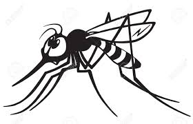 Image result for cartoon mosquito images