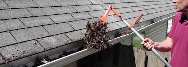 Gutter Cleaning – Roof Repair & Guttering Restoration