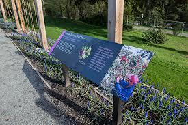 Interpretive Signs In The Garden Ubc Botanical Garden