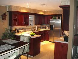 Small Picture Kitchen Remodels small kitchen remodel ideas pictures Kitchen