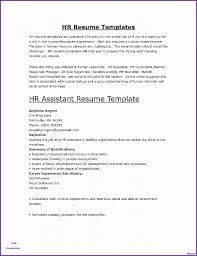 Buyers Resumes 15 Buyers Resume