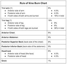 Rule Of 9 S For Burns Chart Burns In Adults The Rule Of Nine Chart