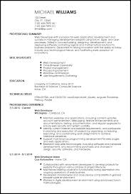 Resume Template For Entry Level Free Entry Level Web Developer Resume Templates Resume Now