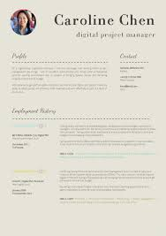 Curriculum Vitae Examples Download Big Cv Curriculum Vitae Templatefessional Slick And Highly