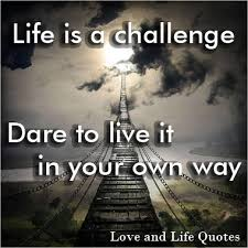 Life Is A Challenge Love And Life Quotes Magnificent Life Challenges Quotes