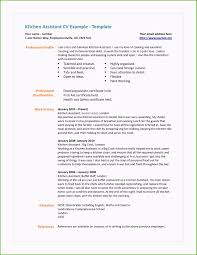 House Cleaner Job Cleaning Service Resume Cute Figure House Cleaning Job Resume