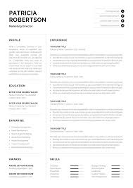 Resume Tem Professional 1 Page Resume Template Modern One Page Cv Word
