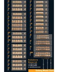 Kaitong Mould Chart Teeth Catalogue