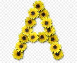mon sunflower alphabet lettering others