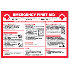 Free Printable First Aid Chart Emergency First Aid Workplace Safety Wallchart