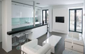 Kitchen For Apartments Kitchen Apartments Small And Modern Living Room Also White Sofa