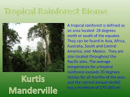 The plants and trees in the rainforest grow to different heights. Ppt Tropical Rainforest Biome Powerpoint Presentation Free Download Id 2487010