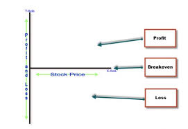 profit loss graph profit and loss graphs for covered call writing the blue