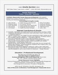 Apple Pages Resume Templates Free Example Of Resume Template Pages