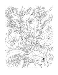 Small Picture Adult Coloring Pages A Tangle of Flowers Set of 12 by emerlyearts