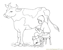 Small Picture Free Printable Cow Coloring Pages For Kids