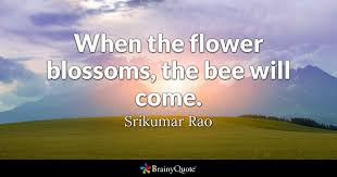 Secret Life Of Bees Quotes Magnificent When The Flower Blossoms The Bee Will Come Srikumar Rao