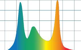 Color Matters Color Kinetics