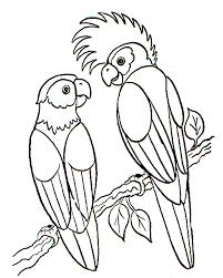 Small Picture Bird Coloring Page Parrots Animal Coloring pages of