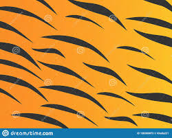 Masai Design Wonderful Simple Design Of The Tiger Skin Stock Vector
