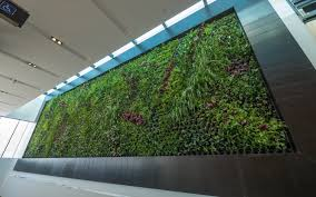 artificial green wall australia