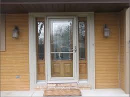 Larson Storm Doors Lowes Photo Album Door Ideas Pictures - Greenite