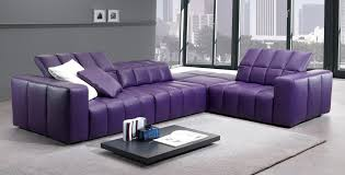 Purple Living Room Rugs Interior Elegant Modern Living Room Interior Design Purple