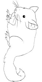 chinchilla animal coloring pages