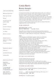cv or resume samples cv resume sample appearance entertaining guests cv resume format for