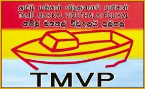 """Résultat de recherche d'images pour """"tmvp"""""""