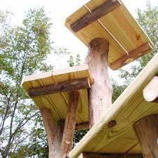 outdoor cat tree house design