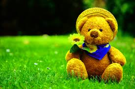 326+ Teddy bear images Wallpaper Photo Pics Pictures Free HD ...
