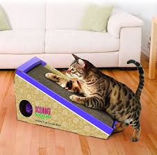What is the Best Cat Scratching Post Today Dec 2017