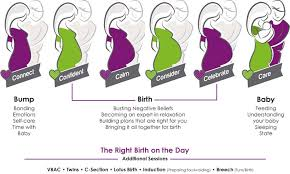 The Bump Birth Plan By Your Side For Bump Birth And Baby Mamas Instinct