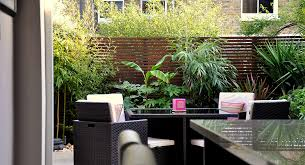 Small Picture Urban Jungle Garden Design Clapham London Bamboo Landscaping