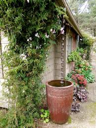 chain downspout. Rain Chain Into A Barrel. So Much Prettier Than Gutter/downspout. Downspout