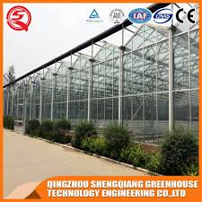 china agriculture low cost garden glass green house china greenhouses green houses