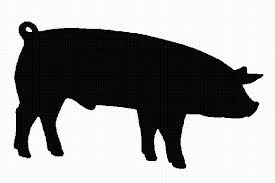 show heifer silhouette. Plain Show Show Pig Silhouette Images Pictures  Becuo On Heifer J