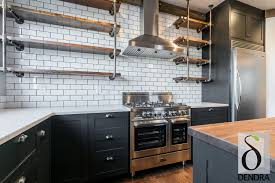 Painting Ikea Kitchen Doors Dendra Cabinet Doors Help Create The Ikea Kitchen Of Your Dreams