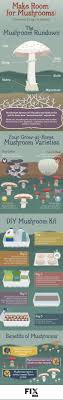 Kitchen Garden Mushrooms 1000 Images About Mushrooms On Pinterest